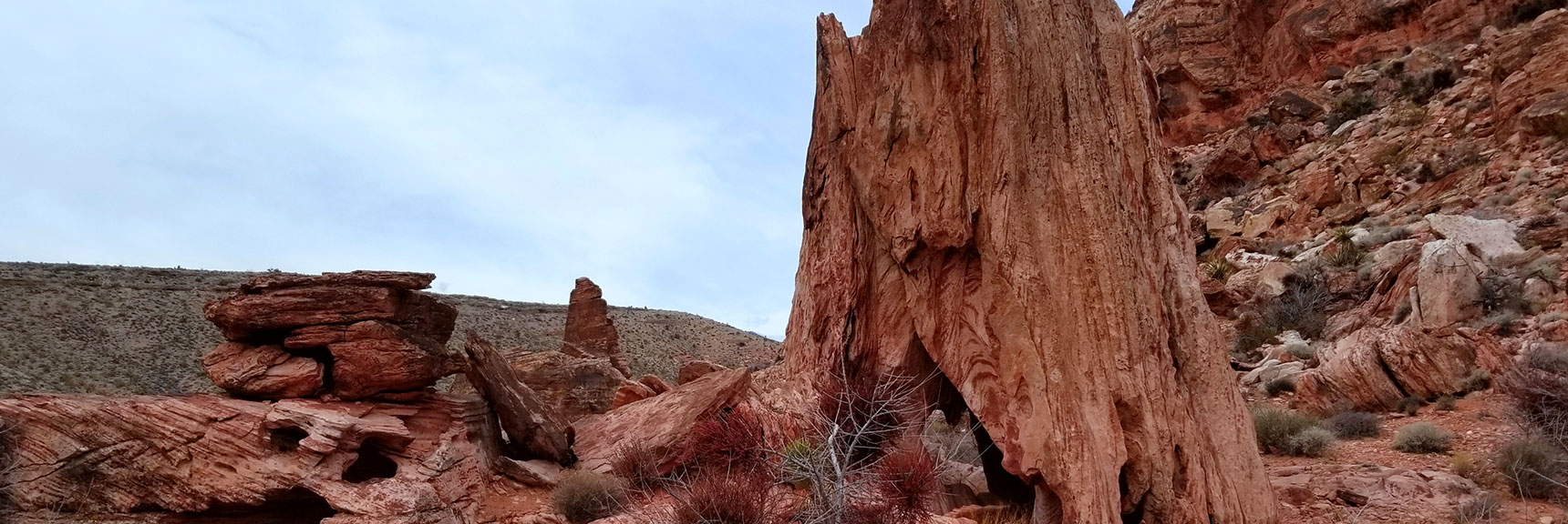 West Side of Calico Hills on Grand Circle, Red Rock National Park, Nevada