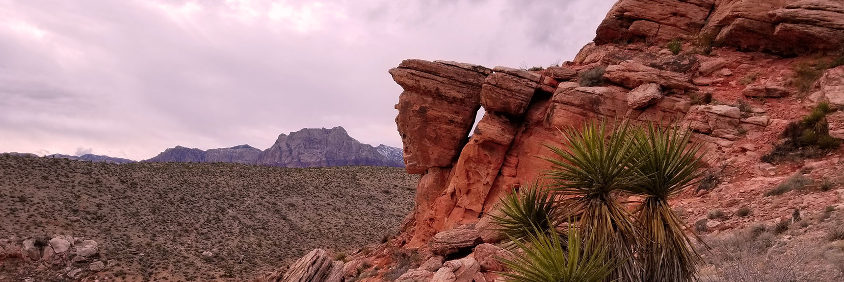 West Side of Calico Hills In Red Rock National Park Northwest of Las Vegas, Nevada