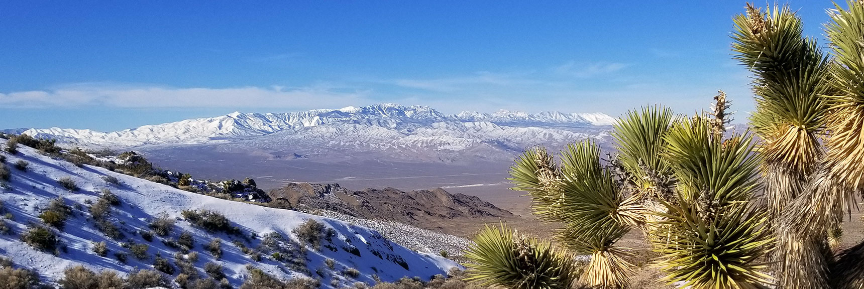 Mt Charleston Wilderness from North Side of Gass Peak, Nevada