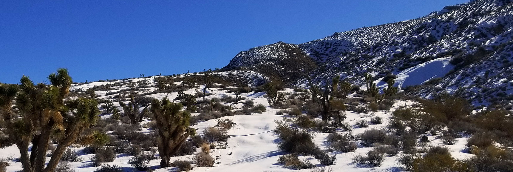 North Side of Gass Peak After Snowfall, Nevada