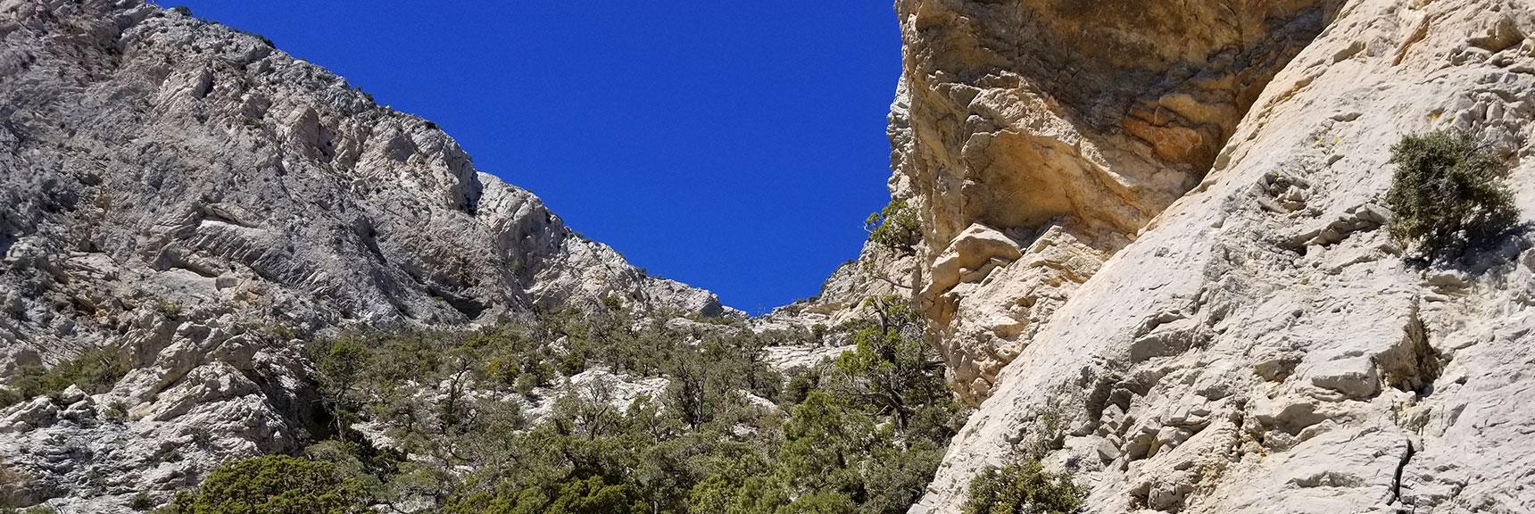 900 ft Below La Madre Mt Summit