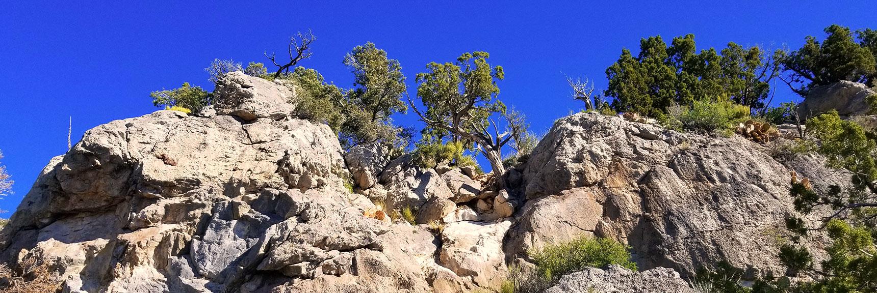Short Class 3-4 Rock Climb Neat Summit of Keystone Thrust, La Madre Mt. Wilderness, NV