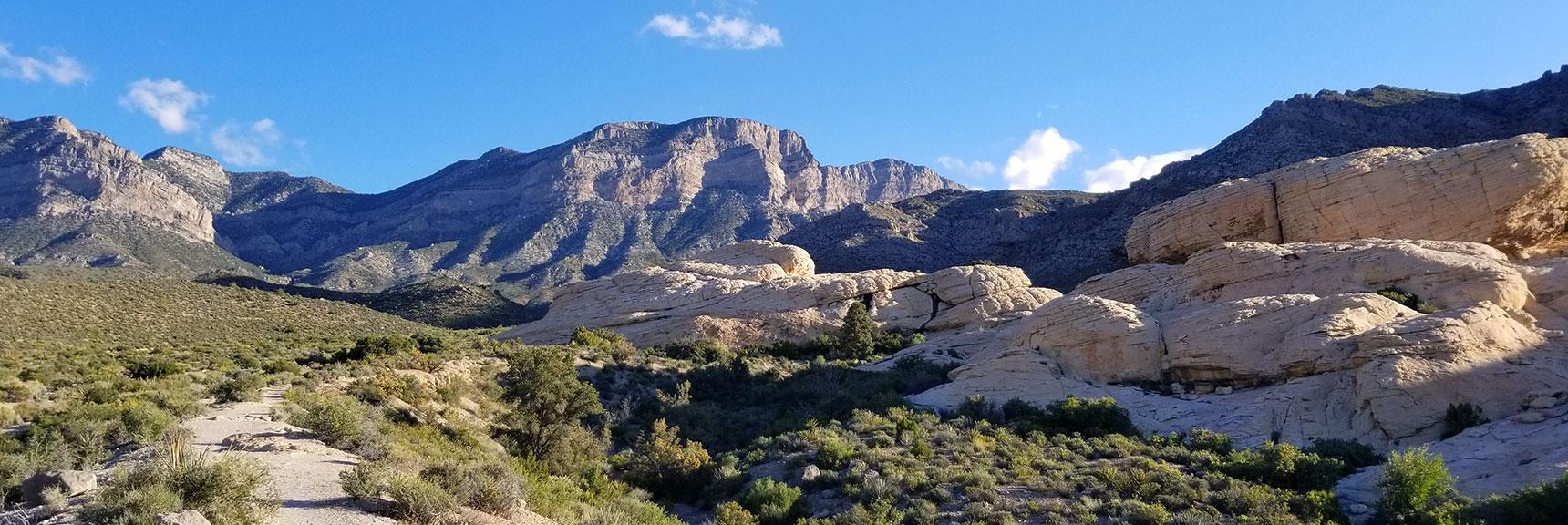 Trail Toward Turtlehead Peak in Red Rock National Park, Nevada