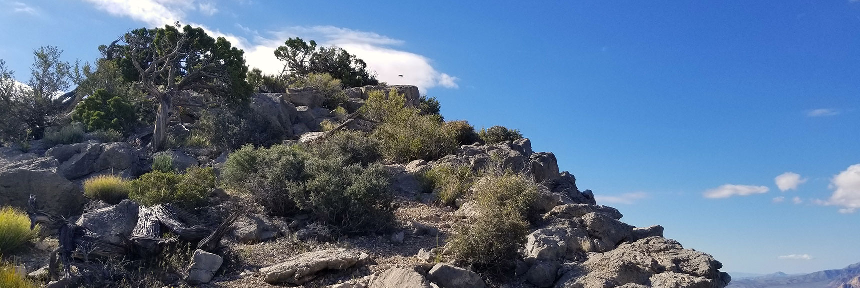 Turtlehead Peak Summit in Red Rock Park, Nevada