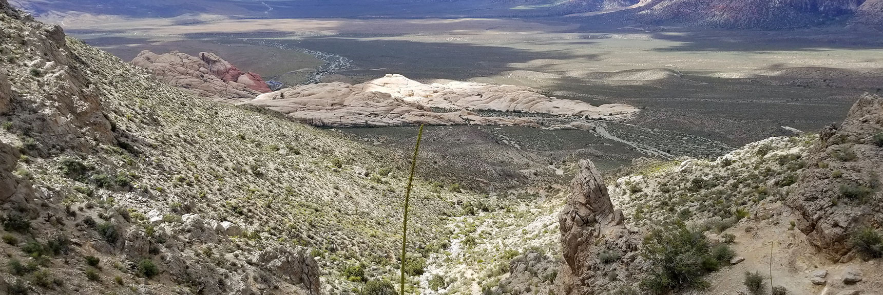 Heading Down Main Turtlehead Peak Trail in Red Rock National Park, Nevada