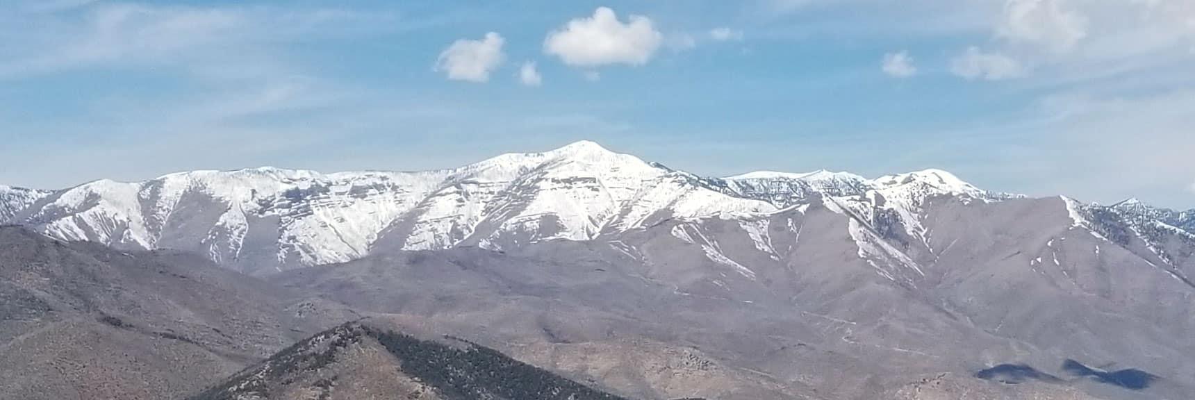 Griffith Peak in Mt Charleston Wilderness Viewed from 7800ft on Keystone Thrust Near La Madre Mt, Nevada