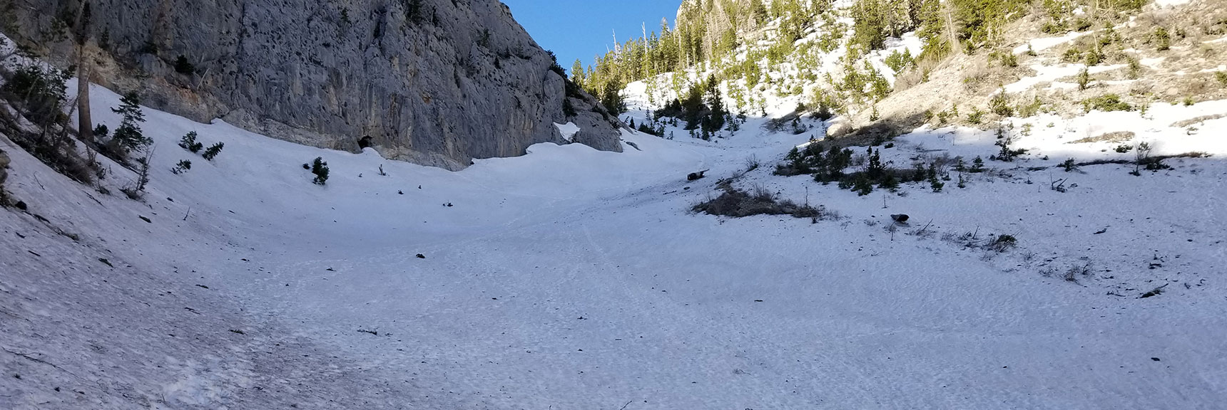 First June 2019 Snowfield on Trail to Griffith Peak, Nevada