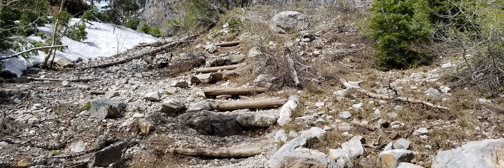 Stairway on South Climb Trail to Griffith Peak in Mt Charleston Wilderness