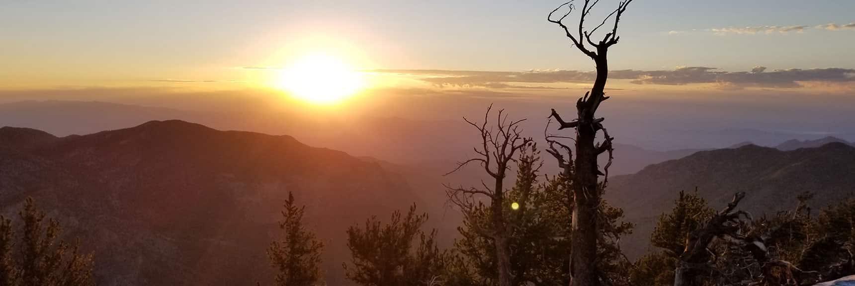 Sunrise on the South Ridge of Kyle Canyon