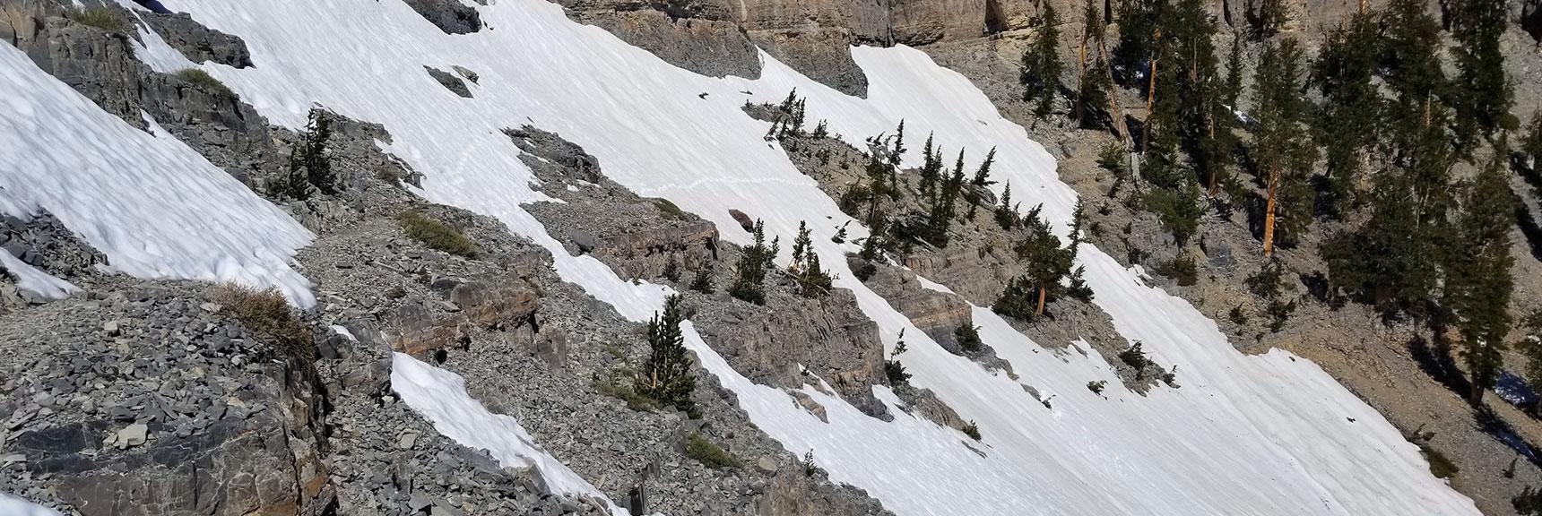Navigating Snow Fields on North Side of Charleston Peak