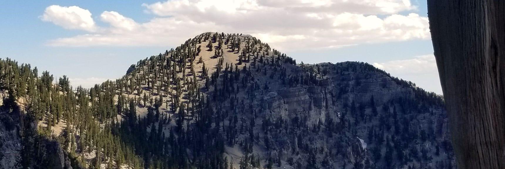 Lee Peak Viewed from North Loop Trail Below Charleston Peak
