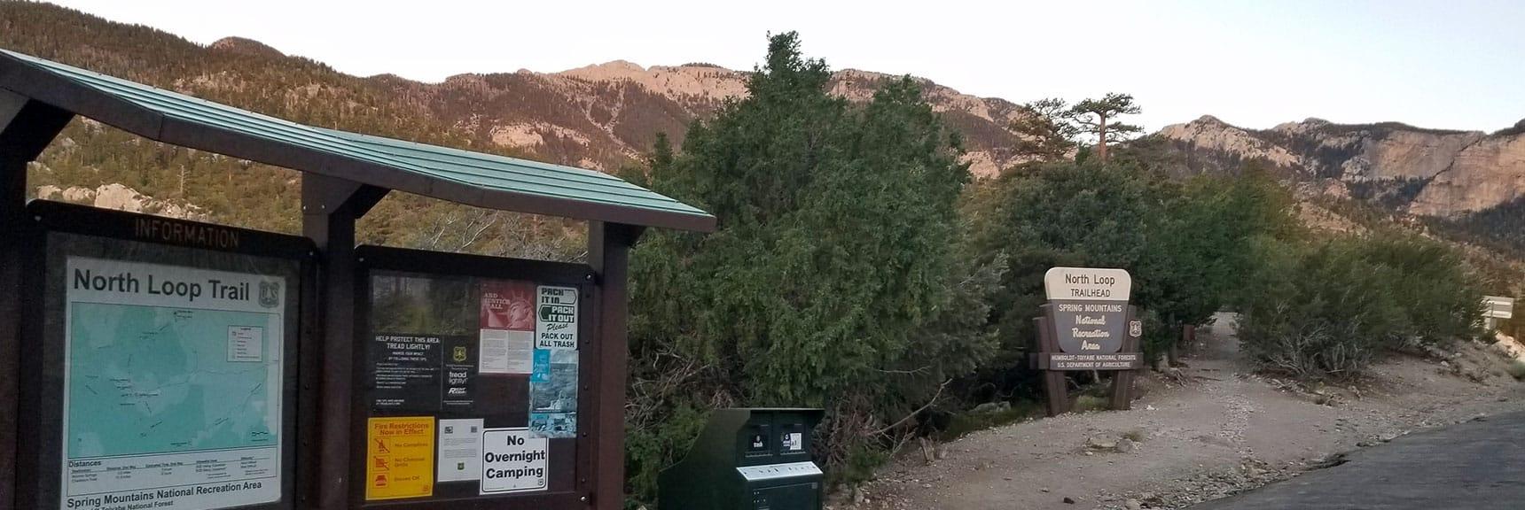 North Loop Trailhead Toward Fletcher Peak, Rain Tree and Charleston Peak