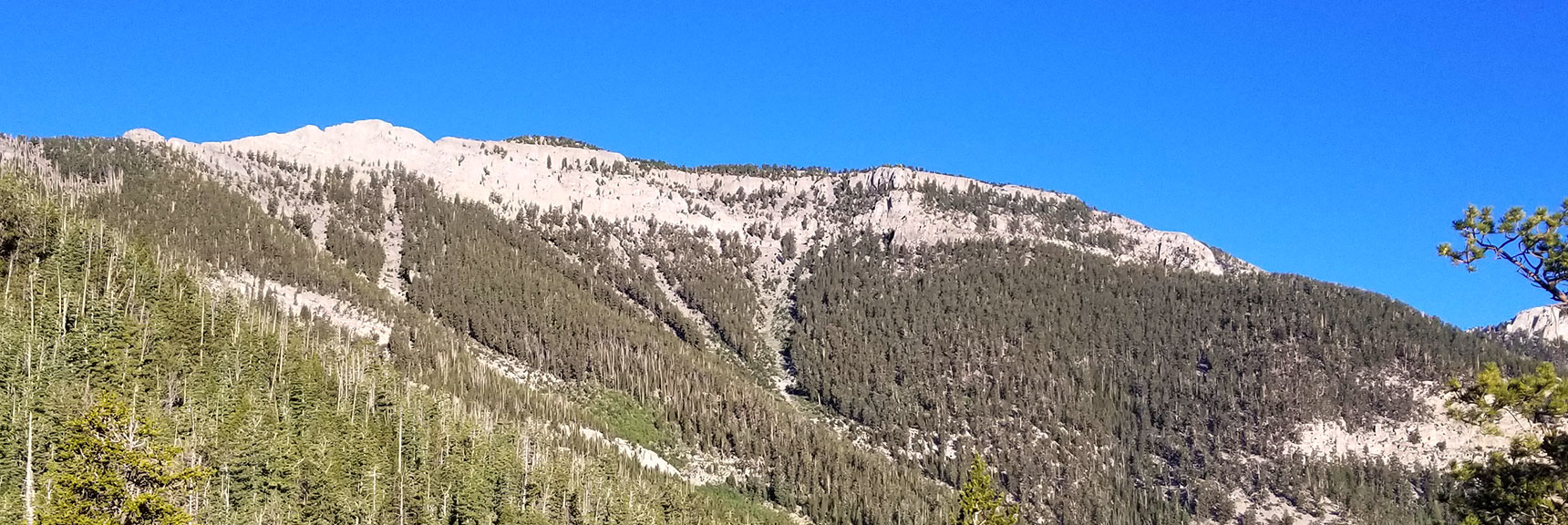 Viewing Summit Approaches on the East Side of Mummy Mountain from the North Loop Trail
