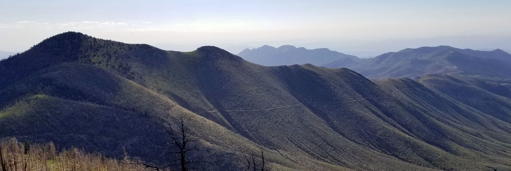 Harris Mountain, Ridge and Main Trail from Harris Springs Rd.