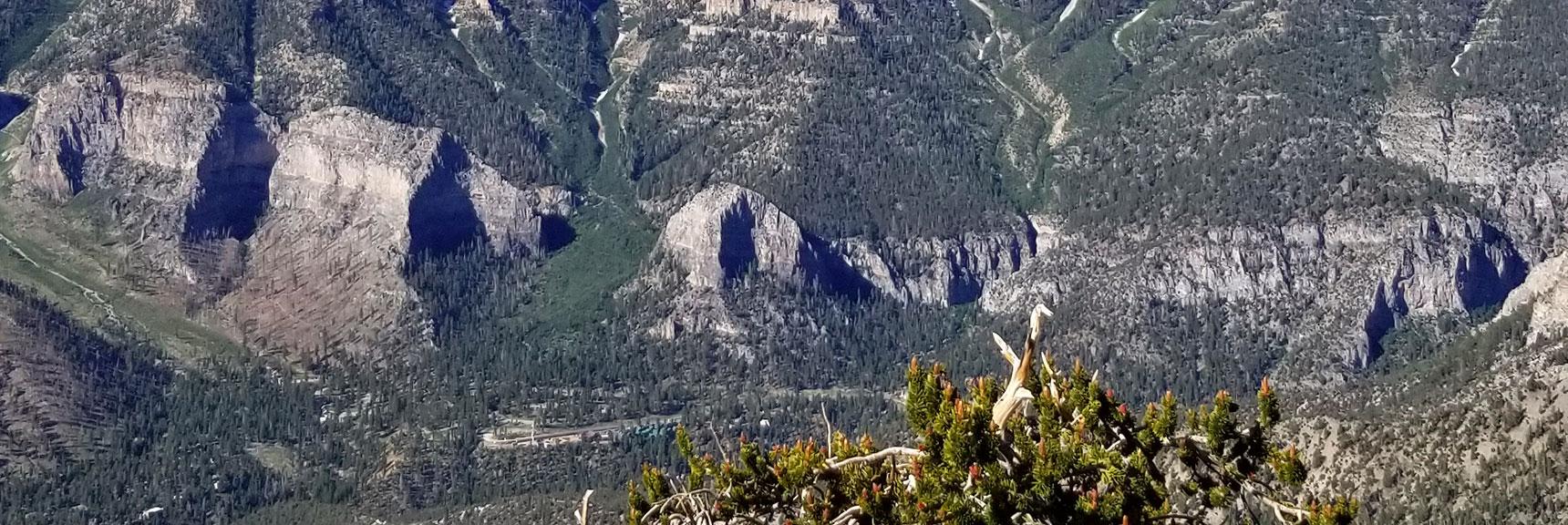 Cathedral Rock Viewed from Fletcher Peak in Mt. Charleston Wilderness, Nevada