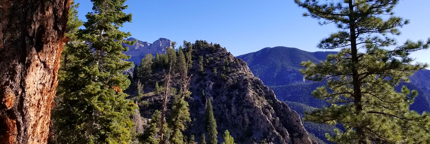 Cathedral Rock Viewed from Its Saddle, Mt. Charleston Wilderness, Nevada