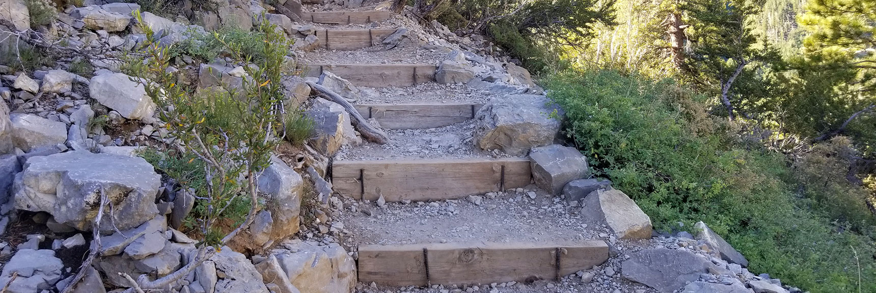Stairs Along Cathedral Rock's Final Approach, Mt. Charleston Wilderness, Nevada