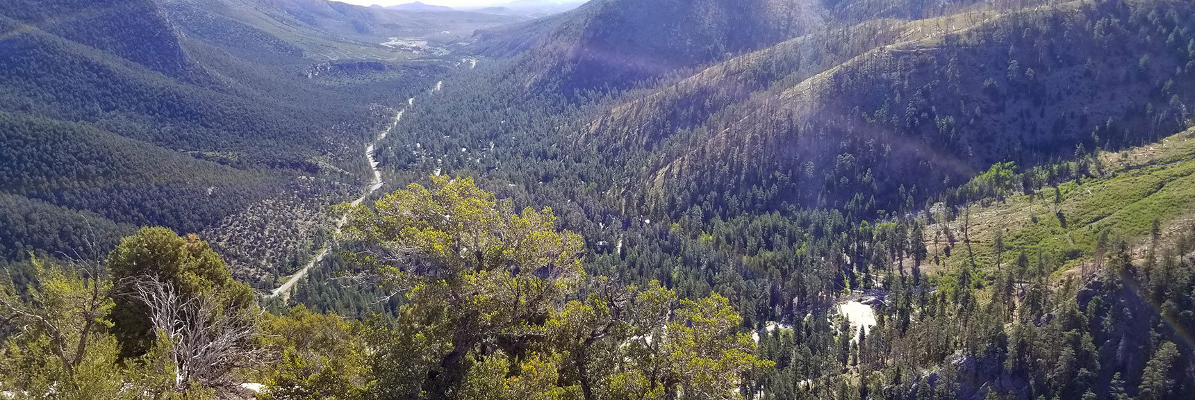 View Down Kyle Canyon from Cathedral Rock Summit, Mt. Charleston Wilderness, Nevada