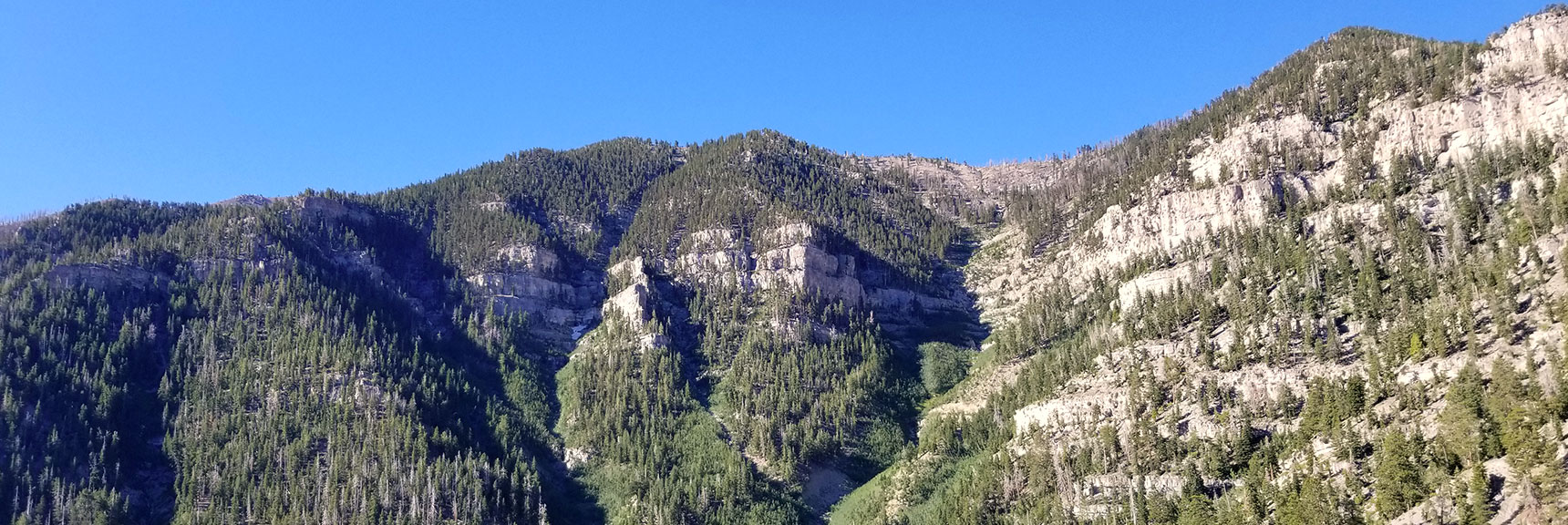 View of of Potential South Kyle Canyon Ridge Approaches from Cathedral Rock Summit, Mt. Charleston Wilderness, Nevada