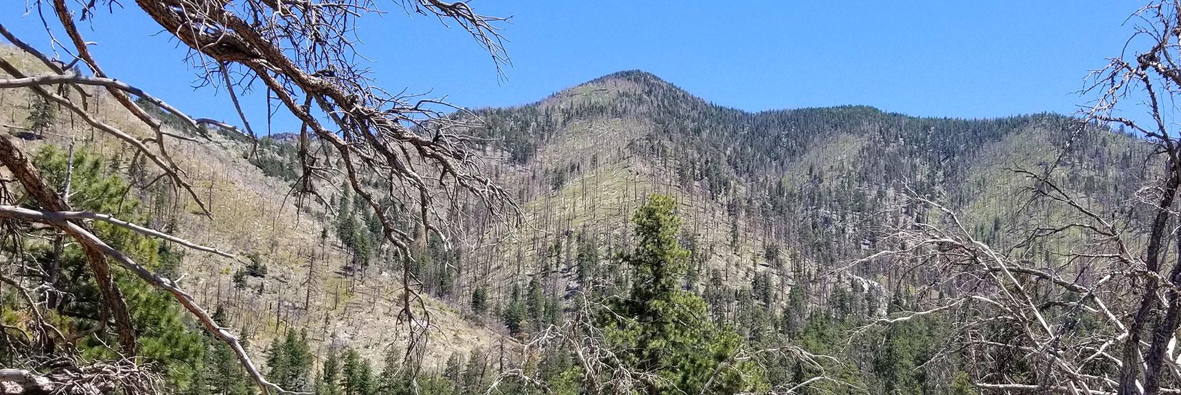 Looking Up Harris Mt. Descent Ridge from Rainbow Sub-Division, Nevada
