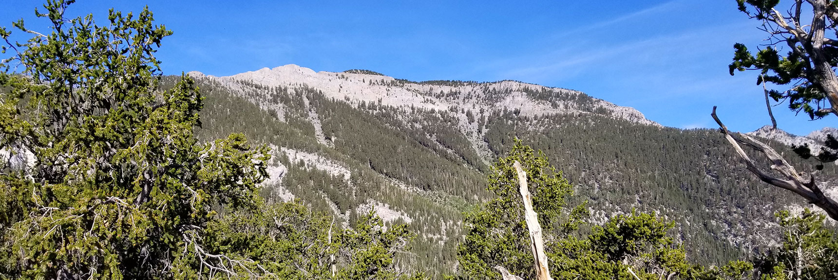 Eastern Side of Mummy Mountain Viewed from the First Plateau on the North Loop Trail in Mt. Charleston Wilderness, Nevada