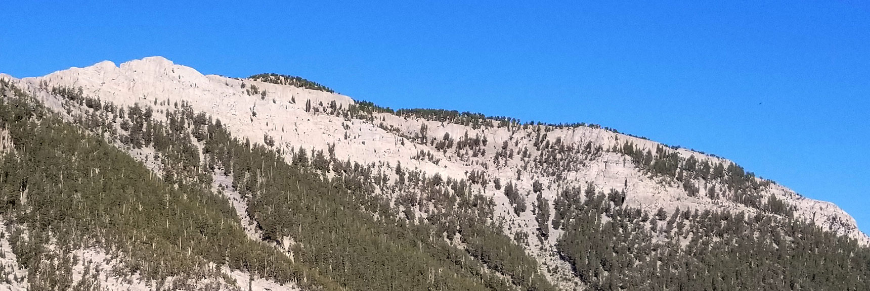 Closer View of Mummy Mountain Showing the Final Approach and Summit