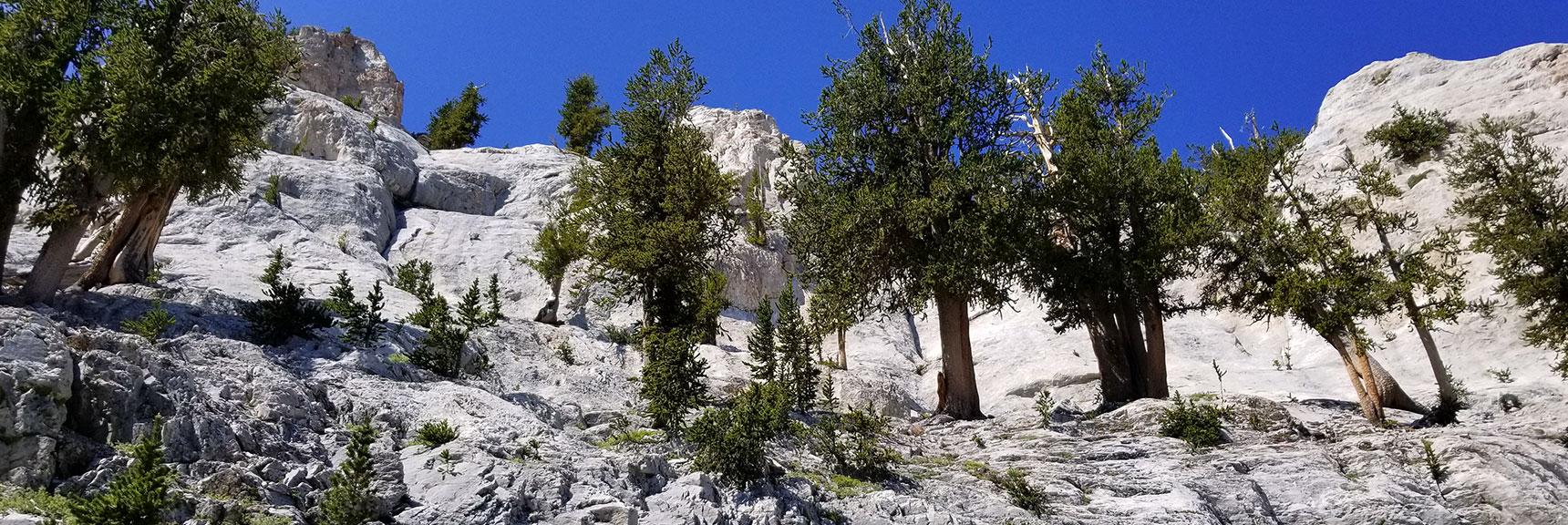 Arrival at the Base of the East Cliff of Mummy Mountain in Mt. Charleston Wilderness, Nevada