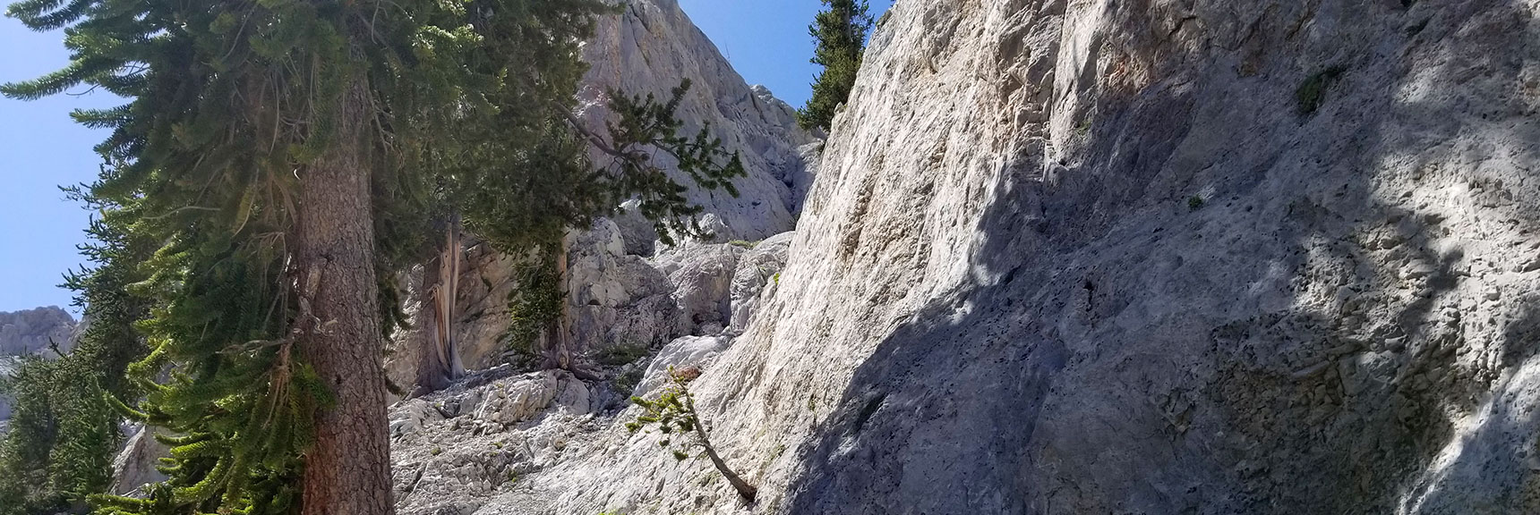 Entering the Mouth of the Narrow Mummy Mt. East Final Approach Canyon in Mt. Charleston Wilderness, Nevada
