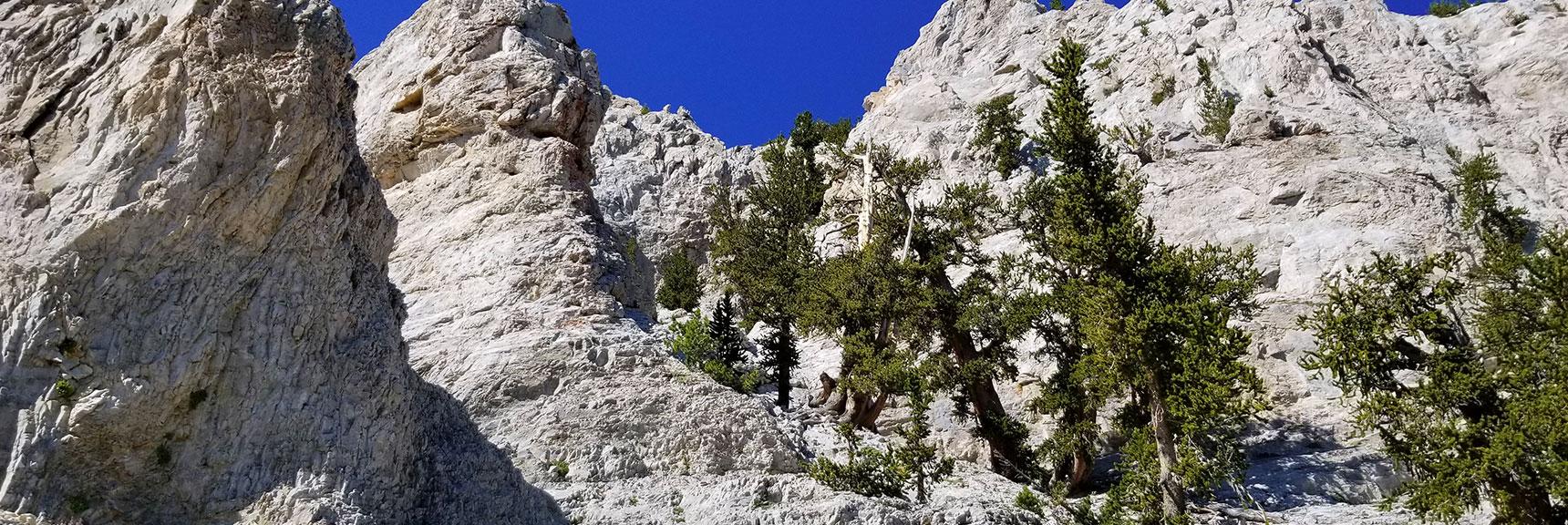Entering Mummy's False Summit Approach Canyon, Nevada