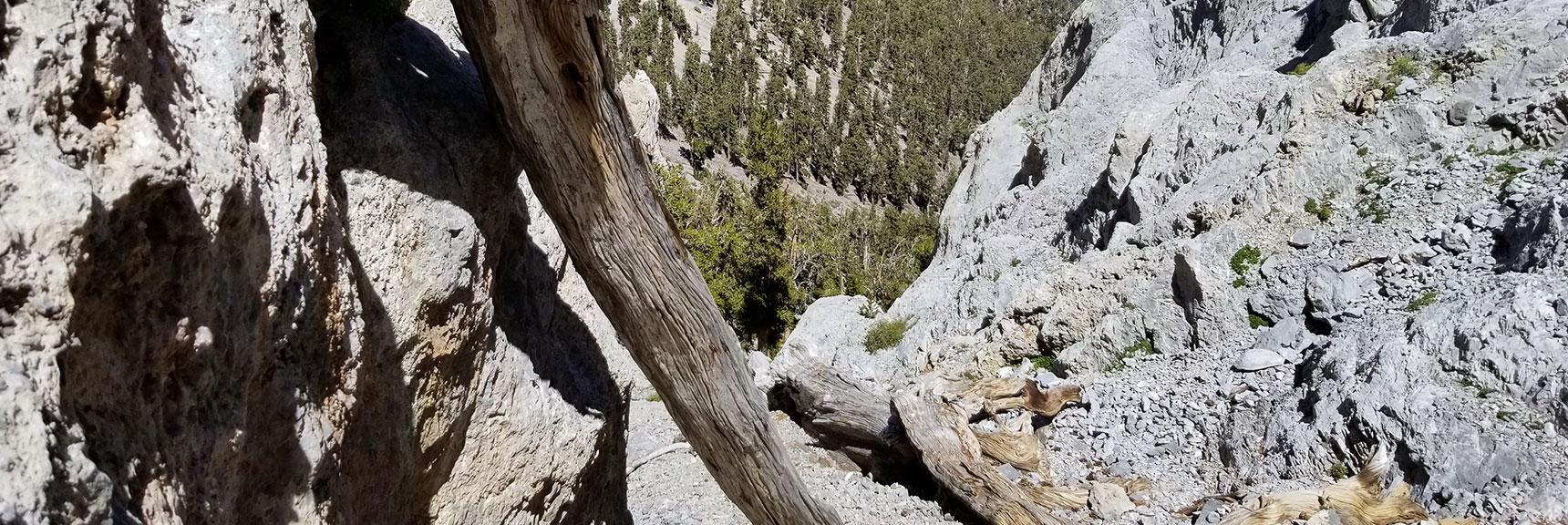 100ft Drop Below 10ft Vertical Rock Wall - If You Slip!