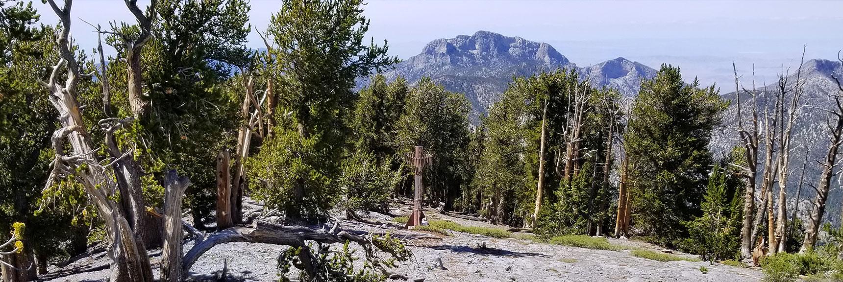 Abandoned Ski Tower Below Lee Peak Marks Left Turn to Rejoin Upper North Loop Trail in Mt Charleston Wilderness, Nevada