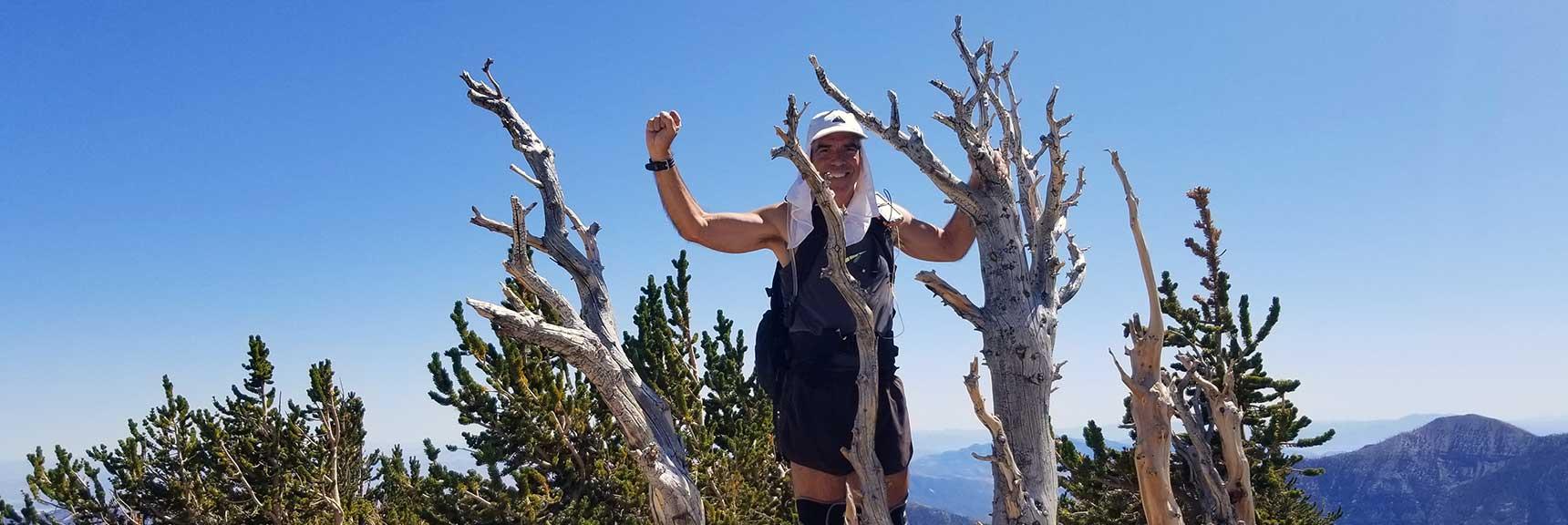 David on the Summit Tree of Mummy Mt. in Nevada