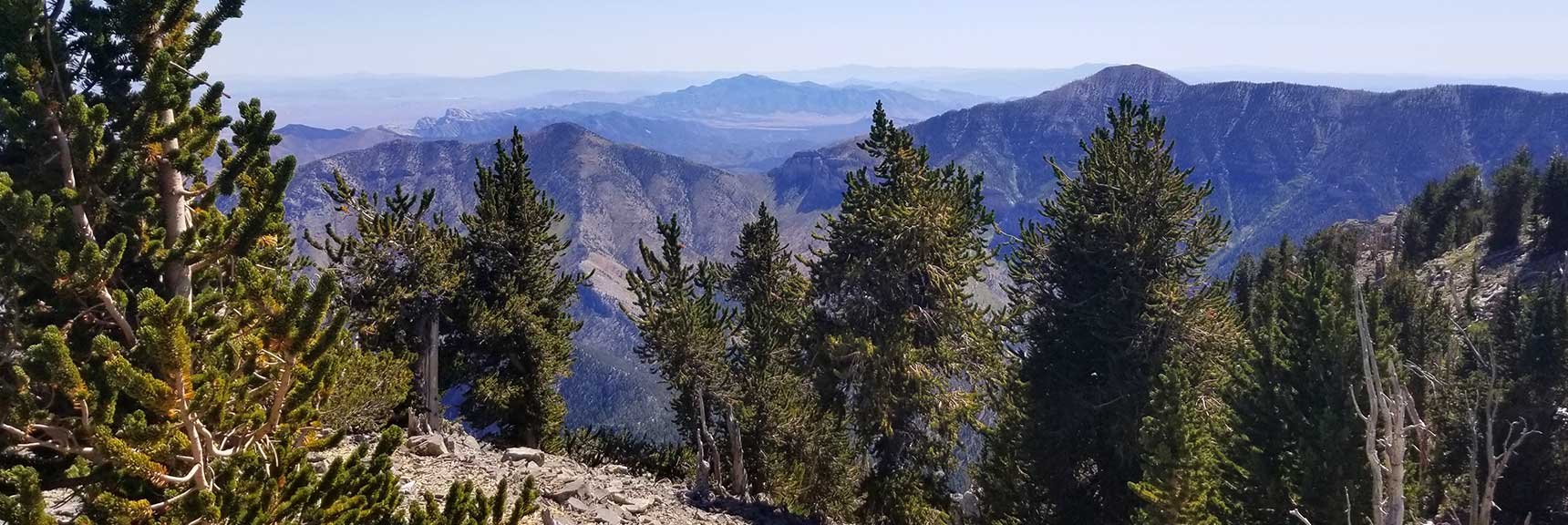 View Toward Griffith Peak and Harris Mt from Mummy Mt Summit, Nevada