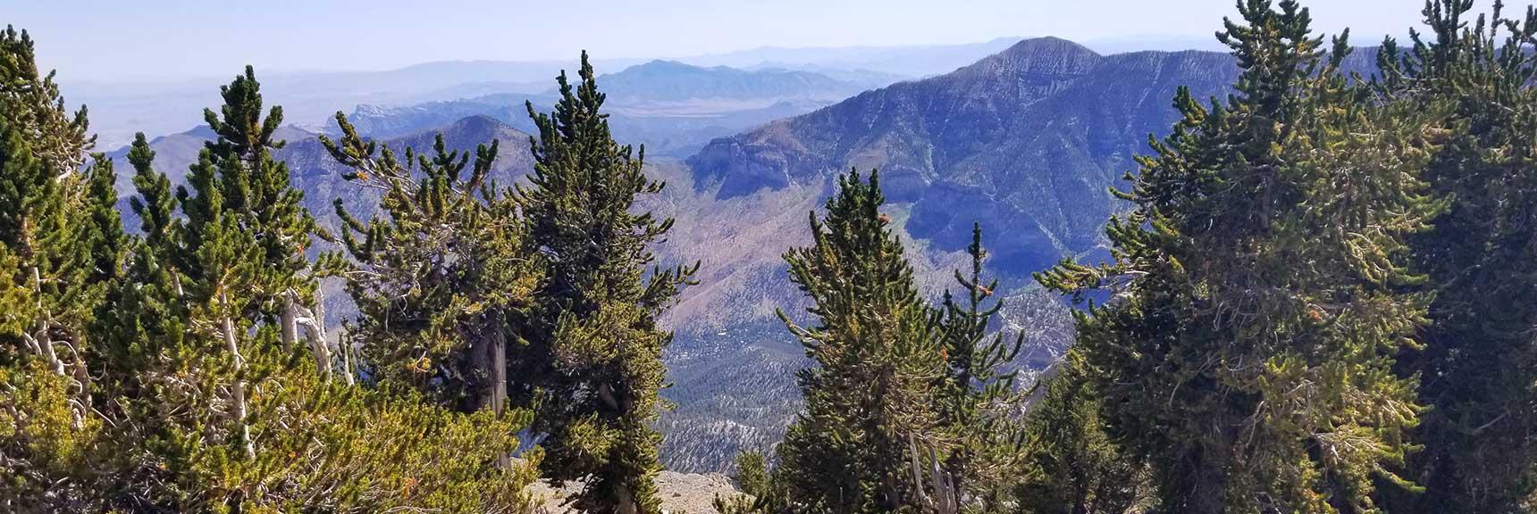 View from Mummy Mt Summit, Nevada