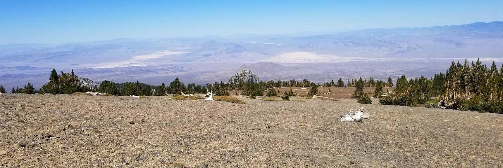 Walk Toward the Northern Edge of Mummy Mt. Summit, Nevada