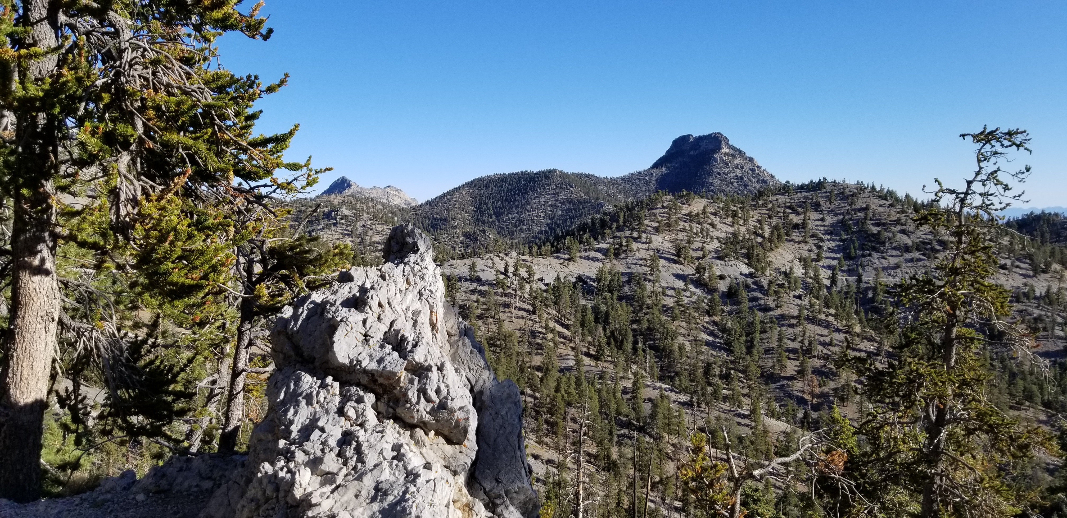 A 9453ft Rocky Peak Viewed from the Bristlecone Pine Trail in Mt. Charleston Wilderness, Nevada