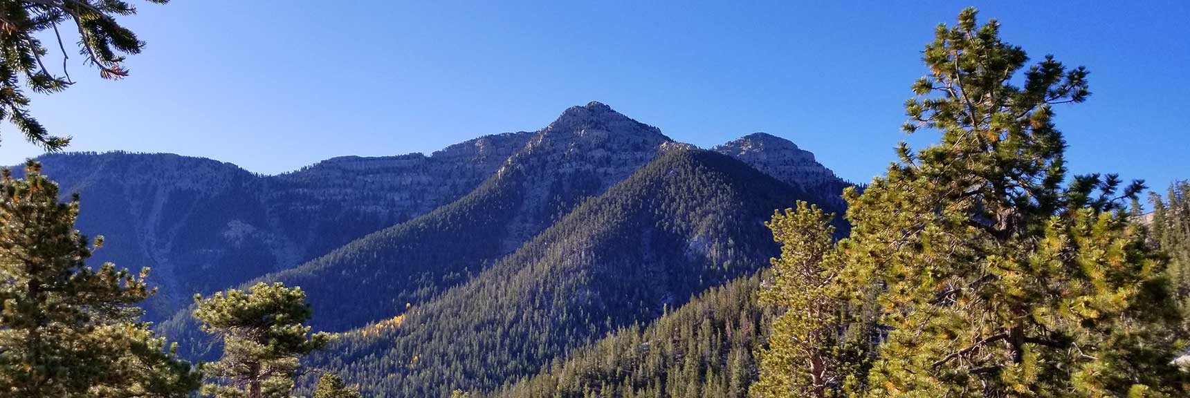 Breaking Out Into the Open, View of Lee Peak on the Bristlecone Pine Trail in Lee Canyon, Mt. Charleston Wilderness, Nevada