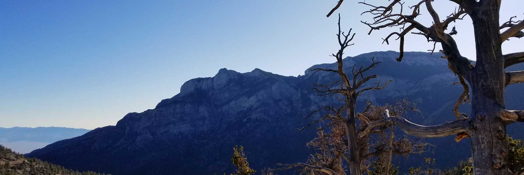 View of Mummy Mountain from the Bristlecone Pine Trail in Lee Canyon, Mt. Charleston Wilderness, Nevada