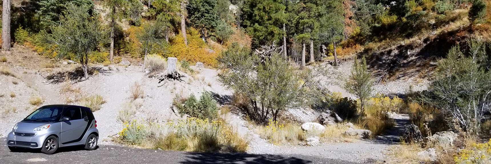 Unmarked Trailhead to Cockscomb Peak and Ridge in Mt. Charleston Wilderness, Nevada