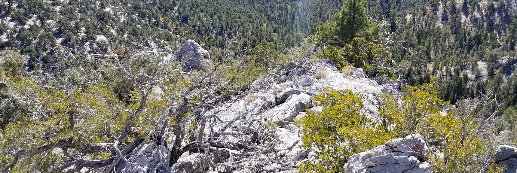Navigating Rock Formations on the Approach Ridge to Cockscomb Peak and Ridge in Mt. Charleston Wilderness, Nevada