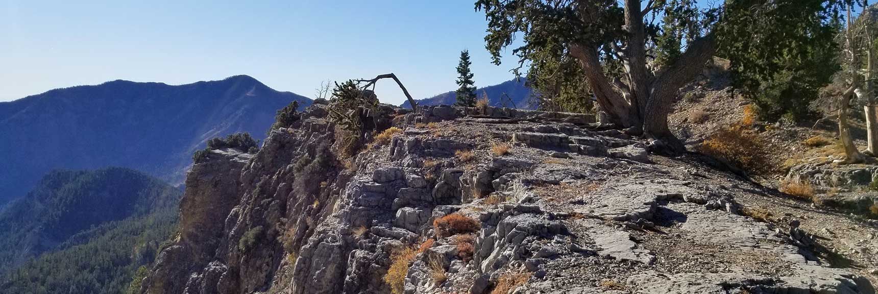 Harris Mountain viewed from Cockscomb Ridge, Cockscomb Ridge Wilderness Circuit in Mt. Charleston Wilderness, Nevada