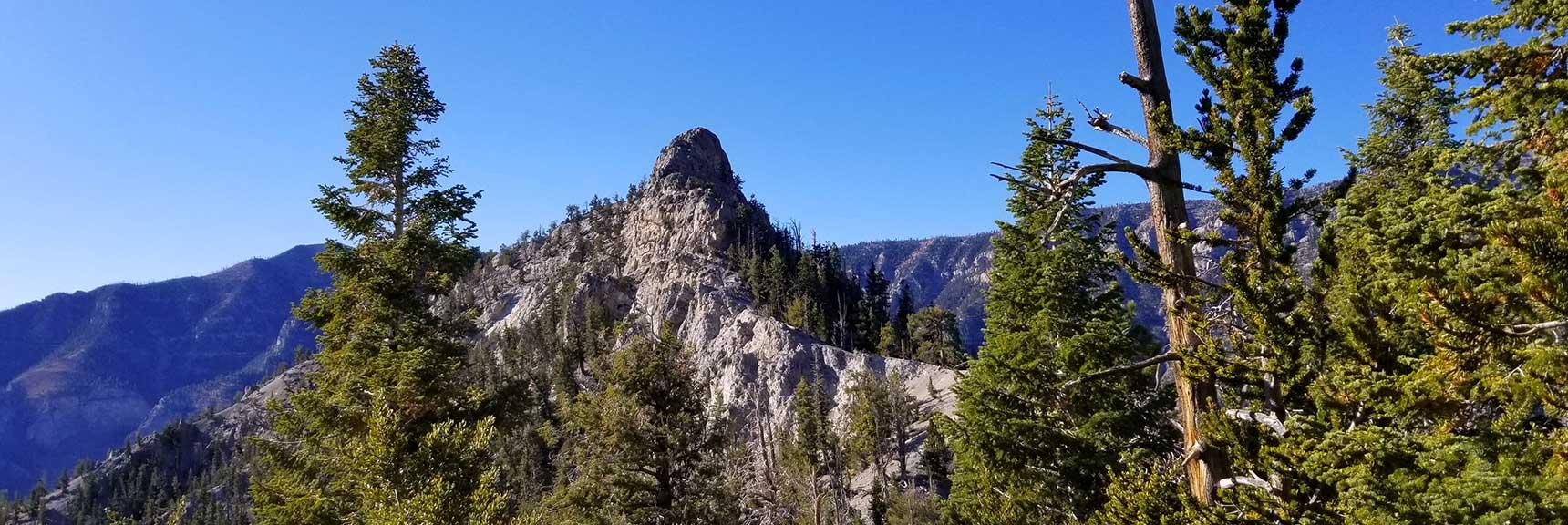 Cockscomb Peak and Ridge Wilderness Circuit in Mt. Charleston Wilderness, Nevada