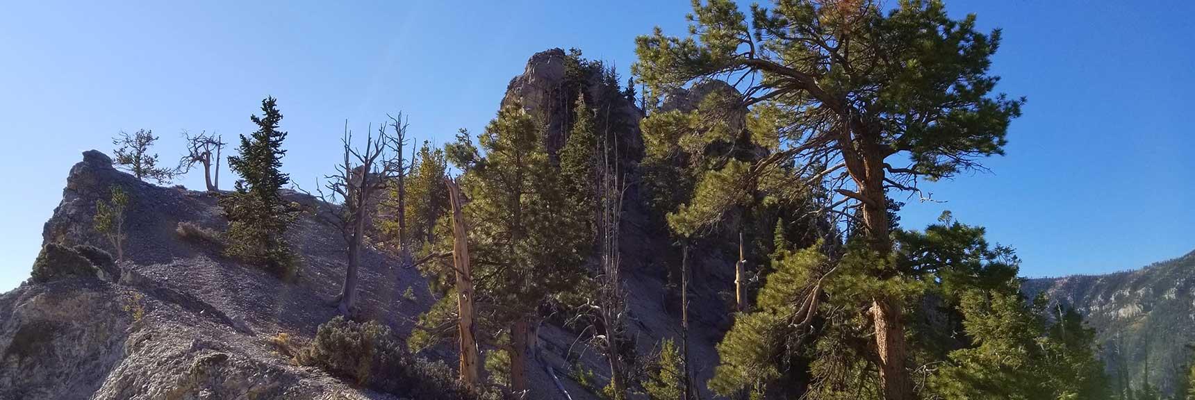 West side of Cockscomb Ridge, in Mt. Charleston Wilderness, Nevada