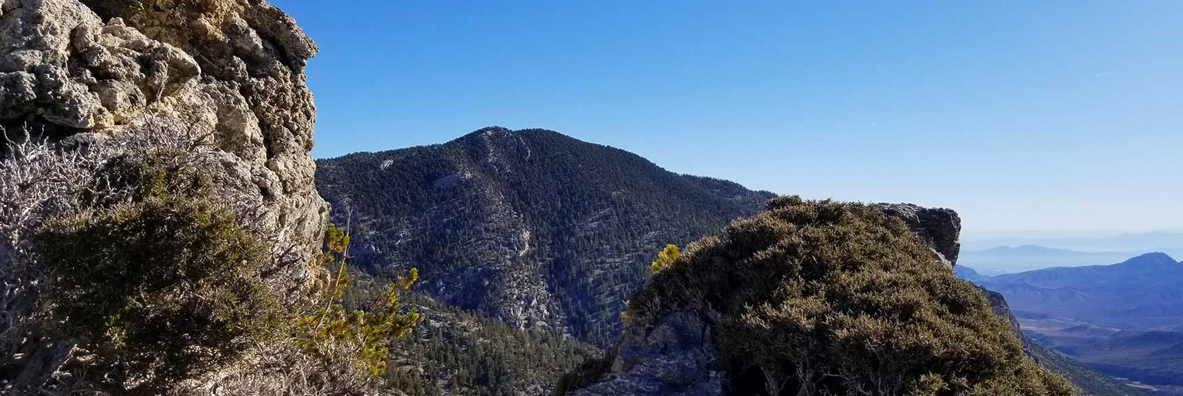 Fletcher Peak Viewed from Cockscomb Ridge in Mt. Charleston Wilderness, Nevada