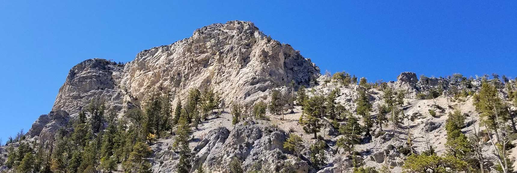 A look back toward Cockscomb Ridge in Mt. Charleston Wilderness, Nevada