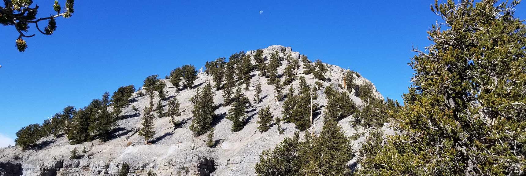 Lee Peak in Kyle Canyon, Spring Mountains, Nevada Slide 001