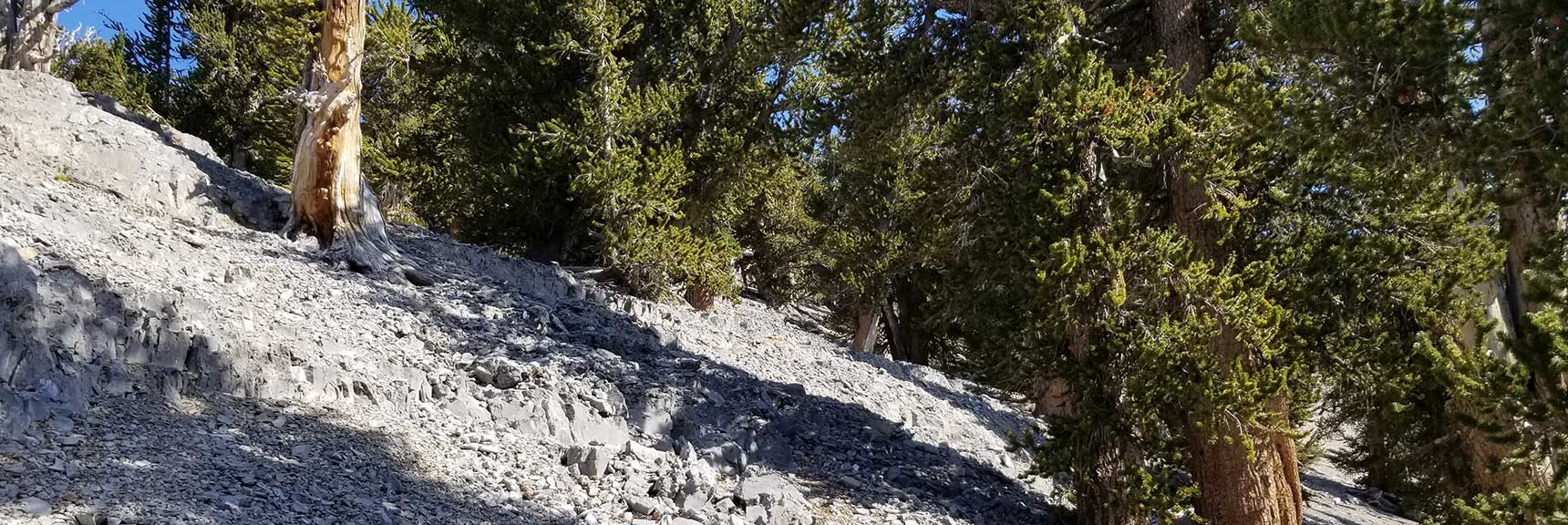 Ascending the Upper Approach Route to Lee Peak in Kyle Canyon, Spring Mountains, Nevada Slide 001