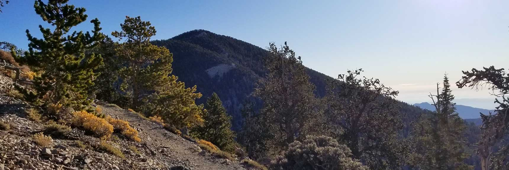Fletcher Peak Viewed from the North Loop Trail on the Way to Mummy Mountain, Nevada via the Northeast Approach