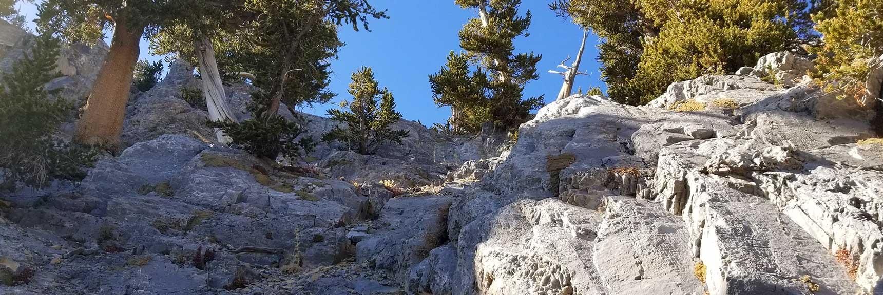 Summit in Sight on the Northeast Final Approach to Mummy Mountain Summit, Nevada