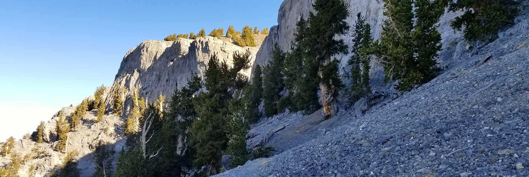 Traversing the Ledge Below Mummy Mountain Upper Cliff, Six Peak Circuit Adventure Strategy, Spring Mountains, Nevada
